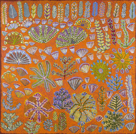 Rosie Ngwarraye Ross, Bush flowers and bush medicine plants, 2015, Akryl auf Leinen / acrylic on linen, 91.0 × 91.0 cm, © MHM2017.3, Medical History Museum, University of Melbourne